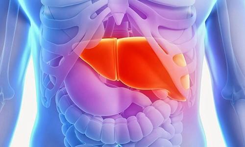 Правила перед проведением КТ брюшной полости