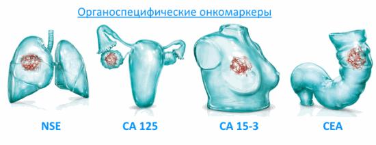Специфические вещества, образующиеся в результате жизнедеятельности раковых клеток