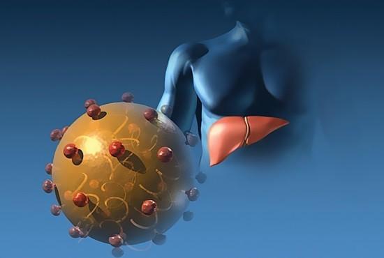 Вирус гепатита В