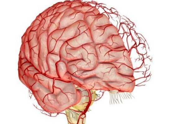 Постоянство объемного мозгового кровотока