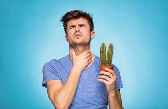 Болит горло можно делать фгдс thumbnail