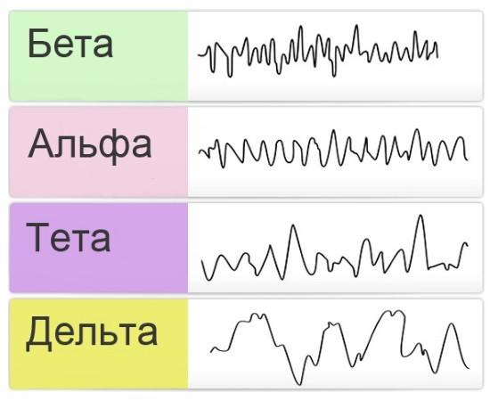 Ритмы, которые описываются в клинической практике